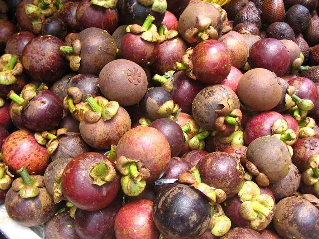 Le Mangoustan considéré comme un superfruit